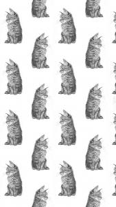 papel-de-parede-para-whatsapp-gato-preto-e-branco
