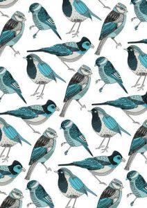wallpaper whatsapp pasarinhos