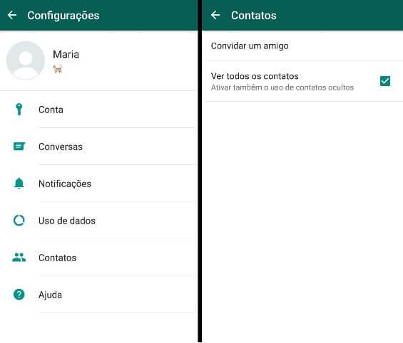 O WhatsApp não reconhece meus contatos