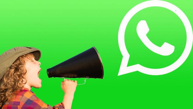 lista de transmissão whatsapp